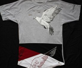 Painted T-shirt Dove in the sky