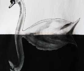 Painted T-shirt 2 swans